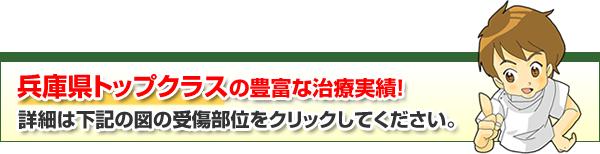 兵庫県トップクラスの豊富な治療実績!詳細は下記の図の受傷部位をクリックしてください。